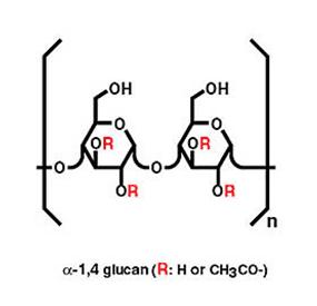 alpha glucans